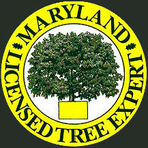 Carney Maryland Licensed Tree Expert
